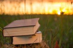 O diário aberto do livro do livro encadernado, páginas ventiladas na natureza borrada aterra imagem de stock