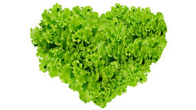 O Dia da Terra, símbolo do coração no verde sae no isolado Foto de Stock
