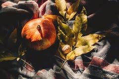 O Dia das Bruxas ou ação de graças feliz abóbora de outono com le colorido Foto de Stock Royalty Free