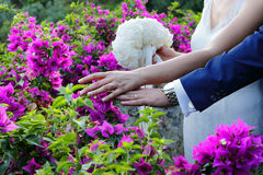 O dia do casamento Foto de Stock Royalty Free