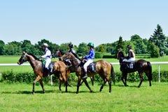 O Dia do presidente na trilha Partenice, raça para o grupo de 3 cavalos dos anos de idade somente III em Wroclaw em Juni 8, 2014 Fotos de Stock