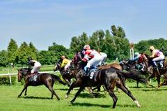 O Dia do presidente na trilha Partenice, raça para o grupo de 3 cavalos dos anos de idade somente III em Wroclaw em Juni 8, 2014 Imagens de Stock