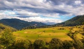 O dia ensolarado bonito está na paisagem da montanha Carpathian, Ukrain Imagens de Stock