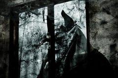 O diabo na janela ilustração do vetor