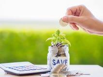 O dinheiro abstrato que salvar a árvore pequena do bebê com frasco de vidro inventa Imagens de Stock