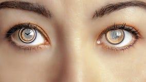 O dinheiro Brown fêmea do tempo Eyes o equilíbrio do olho Fotografia de Stock Royalty Free