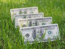 O dinheiro cresce Fotos de Stock Royalty Free