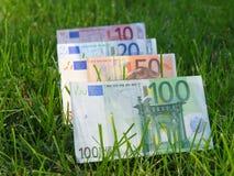 O dinheiro cresce Fotografia de Stock Royalty Free