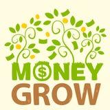 O dinheiro do texto cresce Ilustração Stock