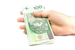 O dinheiro grande polonês isolou-se à disposicão Fotografia de Stock