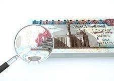 o dinheiro rendido 3D de Egito com lente de aumento investiga a moeda no fundo branco Imagem de Stock Royalty Free