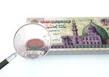 o dinheiro rendido 3D de Egito com lente de aumento investiga a moeda no fundo branco Fotografia de Stock Royalty Free