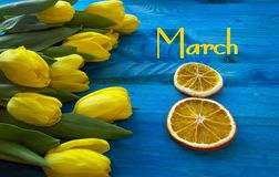 8o do projeto de conceito do março Imagem de Stock