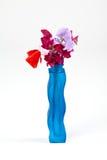 O doce faz xixi em um vaso azul Fotografia de Stock
