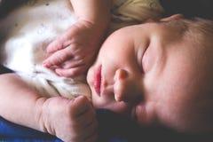 O doce um bebê recém-nascido idoso do mês está dormindo Imagem de Stock