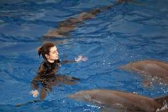 O Dolphinarium Fotos de Stock Royalty Free