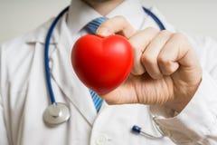O doutor do cardiologista está mostrando o coração plástico vermelho foto de stock
