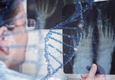 O doutor examina o raio X elementos da ilustração 3D na colagem Fotos de Stock