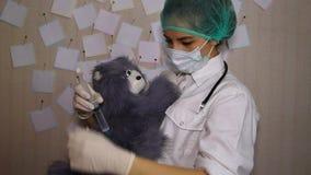 O doutor novo faz a injeção do brinquedo do gato vídeos de arquivo