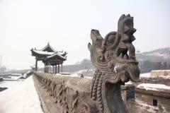 O dragão Imagem de Stock