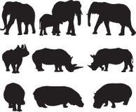 O elefante africano, o rinoceronte branco e o hipopótamo mostram em silhueta o contorno imagem de stock royalty free