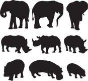 O elefante africano, o rinoceronte branco e o hipopótamo mostram em silhueta o contorno fotografia de stock royalty free