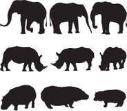 O elefante africano, o rinoceronte branco e o hipopótamo mostram em silhueta o contorno Fotografia de Stock