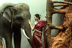 O elefante com a mulher no vestido tradicional, Tailândia foto de stock