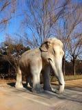 O elefante de pedra da dinastia de Ming no Pequim Imagem de Stock
