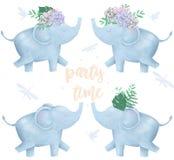 O elefante e as flores para o projeto aprontam o animal digital do clipart do cartão do caráter bonito do desenho de África do es ilustração stock