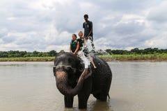 O elefante que toma um chuveiro com o turista e o motorista em chitwan, Nepal Fotos de Stock