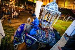 O elefante veste-se acima para Kandy Esala Perahera Foto de Stock