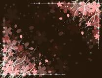 Fundo das flores de cerejeira Foto de Stock Royalty Free