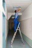 O eletricista na escada portátil instala a iluminação ao teto fotografia de stock royalty free