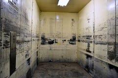 O elevador assustador Imagem de Stock Royalty Free