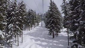 O elevador de cadeira aumenta à parte superior da montanha através do pinho Forest At Winter filme