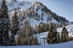 O elevador de cadeira em Stevens Pass mistura-se dentro com as árvores na fotos de stock