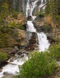 O emaranhado cai Jasper National Park Imagem de Stock