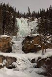 O emaranhado cai no inverno Fotos de Stock Royalty Free