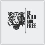 O emblema com tigre Foto de Stock