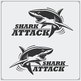 O emblema com tubarão para uma equipe de esporte Imagens de Stock