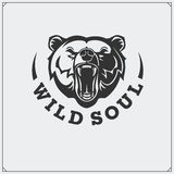 O emblema com urso Foto de Stock Royalty Free
