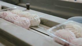 O empacotamento plástico com os seis marshmallows branco-cor-de-rosa dos doces move-se em uma correia transportadora na fábrica vídeos de arquivo