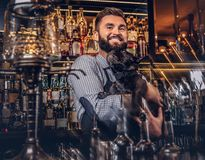 O empregado de bar brutal à moda em uma camisa e em um avental mantém o pug preto do puro-sangue no fundo do contador da barra imagens de stock royalty free