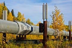 O encanamento de Transporte-Alaska na queda imagens de stock royalty free