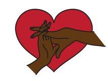 O entrelaçamento das mãos de um par no amor Imagem de Stock