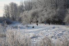O entretenimento das crianças em uma floresta nevado fotografia de stock royalty free