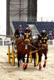 O Equestrian executa março em 23, 2012 em Barém fotos de stock royalty free