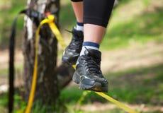 O equilibrista está em um estilingue apertado, que seja fixo nas árvores, em uma baixa altura Imagem de Stock