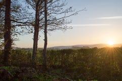 O'er Bowland восхода солнца Стоковая Фотография